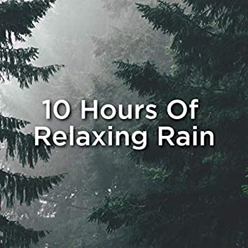 10 Hours Of Relaxing Rain