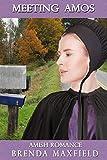Amish Romance: Meeting Amos