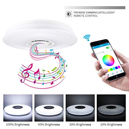 NBSXR Smart APP plafondlamp met Bluetooth-luidspreker, geüpgraded moderne lichtarmaturen met RGB kleurverandering, voor keuken badkamer eetkamer, 24 W