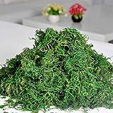 IMIKEYA 1 Bolsa de liquen de Musgo Artificial simulación de Musgo preservado Plantas Verdes Faux liquen Musgo Falso para decoración jardín Patio 20g