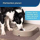 PetSafe Futterreservoir 5 Mahlzeiten - 5