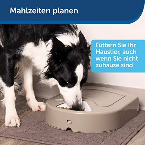 PetSafe Futterreservoir für 5 Mahlzeiten mit Zeitschaltuhr - 2