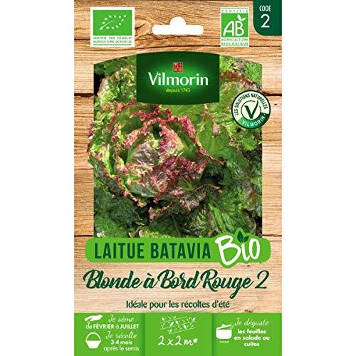 Vilmorin Sachet graines Laitue Blonde à Bord Rouge 2 Bio - Lactuca Sativa
