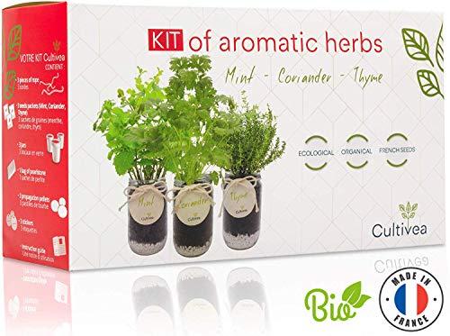 Cultivea –Bio Kräuter Anzuchtset -100% Öko Kräutersamen – Indoor Garten – Bio Samen – Das perfekte Geschenkset – Pflanzset (Minze, Koriander und Thymian) – DIY –
