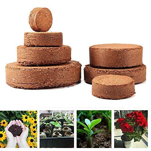 MZY1188 10 Stück Kokos Pellet Nährstoffboden, Sämlingsboden Kokosnussfaser Kindergarten Boden Leichte Pflanze Compressed Base Garden