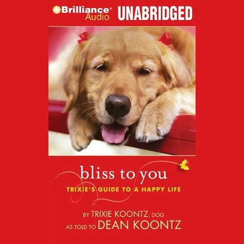 Bliss to You audiobook cover art