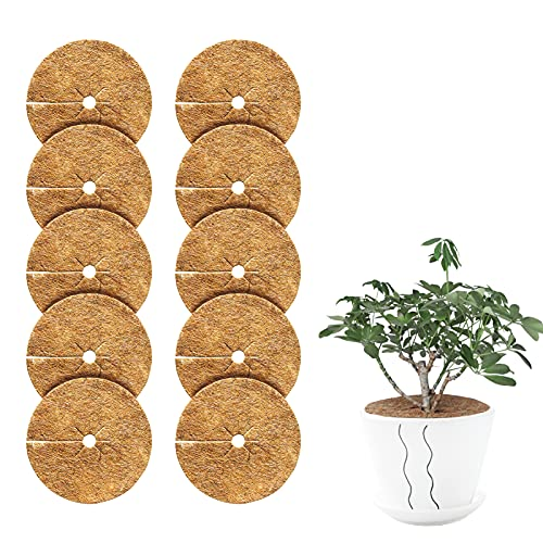 Disque De Protection Plante 10pcs Tapis De Coco Plantes,Disque De Paillage Coco Disques De Paillage...
