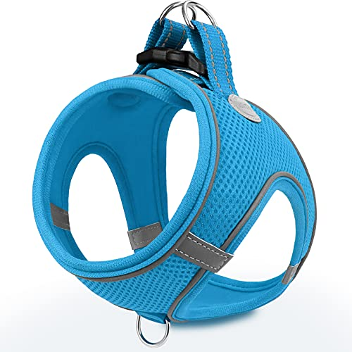 Joytale Hundegeschirr, Reflektierend Weich Gepolstert Hunde Geschirr, Air-Mesh Atmungsaktiv Brustgeschirr für Katze Welpen Hunde, XXXS, Baby Blau