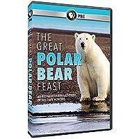 Great Polar Bear Feast [DVD] [Import]