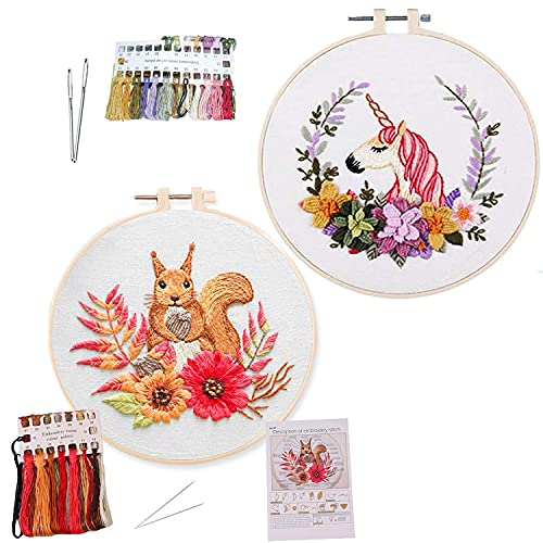 Reppkyh Kit de bordado para principiantes, diseño de ardilla e instrucciones (idioma español no garantizado), ropa de bordado de ardilla, incluye patrones, marco de bordado de bambú.