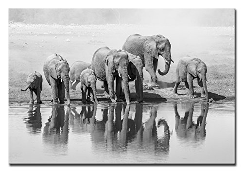 Berger Designs - Wandbild auf Leinwand als Kunstdruck in verschiedenen Größen. Elefanten Familie am Wasserloch. Beste Qualität aus Deutschland (120 x 80 cm BxH) + GRATIS Geschenk