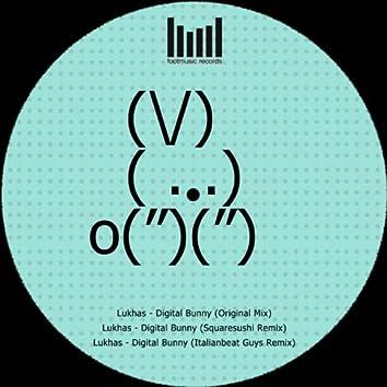 Digital Bunny EP