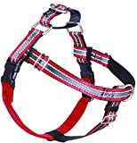 2 Hounds Design Freedom No-Pull Dog Harness with Leash, Reflective, Adjustable Comfortable Dog Harness with...
