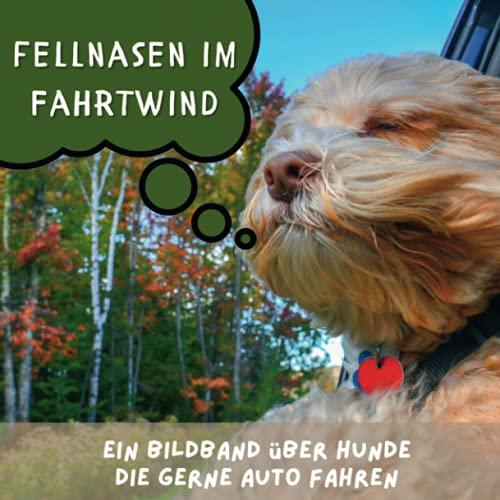 Fellnasen im Fahrtwind: Ein Bildband über Hunde, die gerne Auto fahren