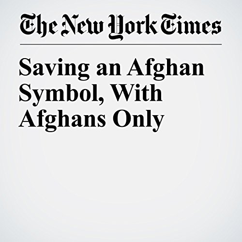 Saving an Afghan Symbol, With Afghans Only copertina