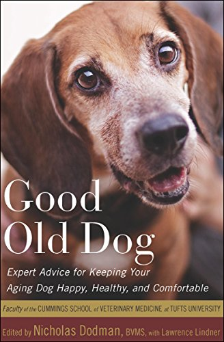 Good Old Dog: Expert Advice for Keeping Your Aging Dog Happy  Healthy  and Comfortable