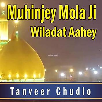Muhinjey Mola Ji Wiladat Aahey - Single