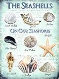 Placa de metal nostálgico vintage de The Seashells para decoración de pared de arte clásico, regalos creativos perfectos para colgar 20 x 30 cm