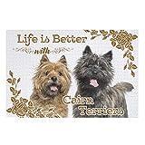 O5KFD&8 Leben ist Besser Dog Cairn Terrier - Puzzle (200/300/500/1000 piezas, material respetuoso con el medio ambiente, 300 piezas), color blanco