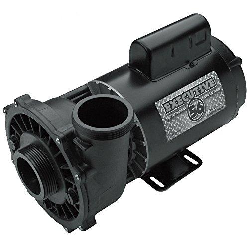 Waterway Plastics 3722021-1D Executive Spa Pump - 56 Frame - 5 HP - 230V