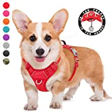 BARKBAY No Pull Dog Harness Large Step in Reflective Dog Harness with Front Clip and Easy Control Handle for Walking Training Running with ID tag Pocket(Red,M)