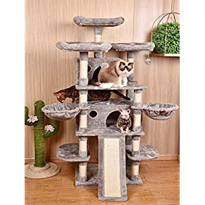 Cat scratching related products for your Cat or Kitten