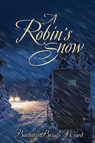 A Robin's Snow