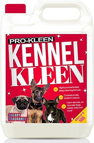 Pro-Kleen Desinfectante, limpiador y desodorizante de perrera (aroma a cereza) – Paquete de 5 l – probado según DVG (Sociedad Médica Veterinaria Alemana)