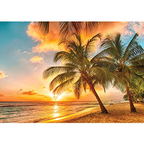 Vlies Fototapete PREMIUM PLUS Wand Foto Tapete Wand Bild Vliestapete - Palmen Meer Paradies Sonnenaufgang - no. 2806, Größe:368x254cm Blueback Papier