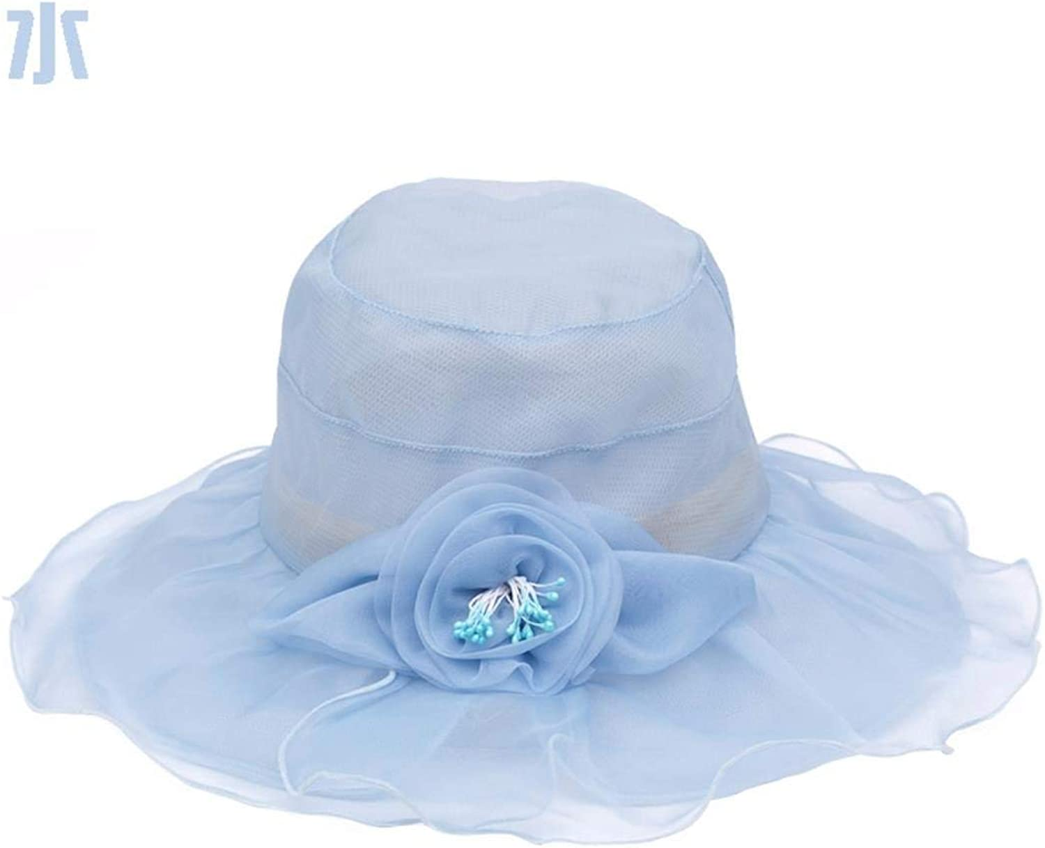 Chuiqingnet Elegant and Stylish Girl Visor Breathable cap in the summer, cool in the summer of silk hats with the new