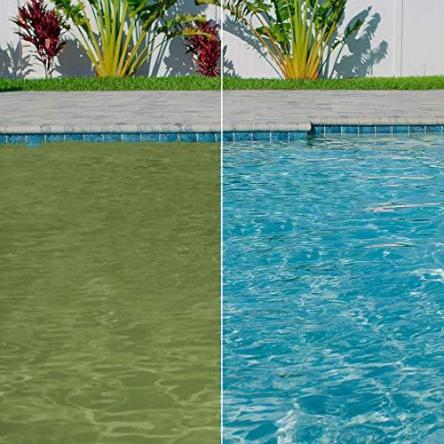Clorox Pool&Spa XtraBlue Algaecide 40 oz