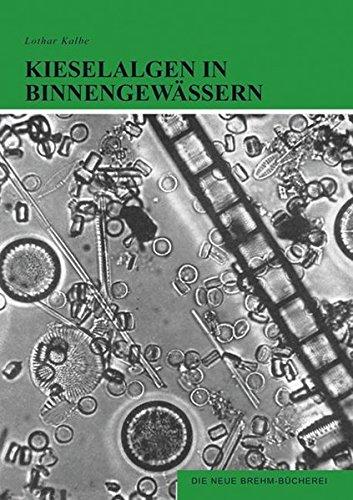 Kieselalgen in Binnengewässern: Diatomeen