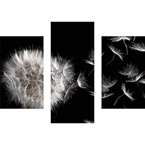 decorwelt | Dreiteiliges Wandbild 3 Teilig Acrylglasbilder Acryl Glasbild Pusteblume Schwarz 90x70 cm Wandbilder Wohnzimmer Esszimmer Deko Wanddeko