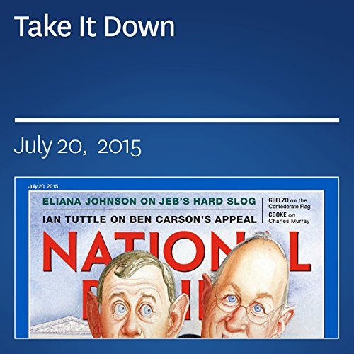 Take It Down audiobook cover art