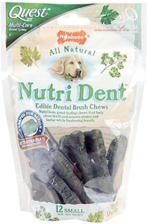 Nylabone NTD100M Small Quest Nutri Dent EdibleDental Brush Chews
