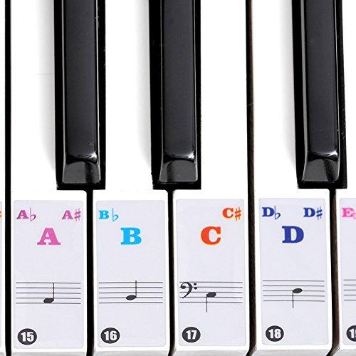 Autocollants de piano, Adhésif-clavier transparent Stickers de piano De Clavier 61/88(couleur)