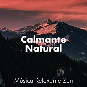 Calmante Natural - Música Relaxante Zen que pode reduzir o estresse