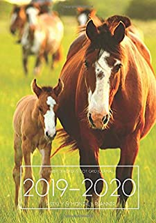 A5 Planner - 2019-2020 Planner Calendar - Horse Foal 15 Months Daily Weekly Monthly Diary With Dot Grid Notebook & Habits Tracker: Academic Goals ... Quotes; From Oct 2019 - Dec 2020