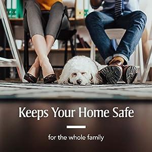 PetArmor Home Household Spray for Fleas and Ticks, 24 Ounce