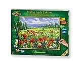 Schipper 609130824 Malen nach Zahlen, Blumenwiese - Bilder malen für Erwachsene, inklusive Pinsel...