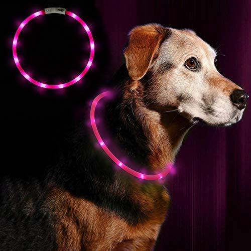 Anicoll LED Leuchthalsband Hunde Halsband USB wiederaufladbar - Längenverstellbarer Haustier Sicherheit Kragen für Hunde und Katzen- 3 Modus 12 Lichte(Rosa)