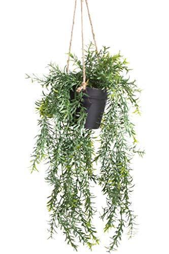 Emerald künstliche Pflanzen Hängeampel im schwarzen Kunststofftopf (Asparagus)