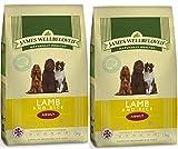 2 x 15 kg James Wellbeloved Lamba & Rice Adulto seco comida para perro
