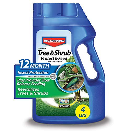 BioAdvanced 701900B 12-Month Tree and Shrub Protect and Feed Insect Killer and Fertilizer, 4-Pound, Granules