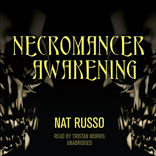 Necromancer Awakening audiobook cover art