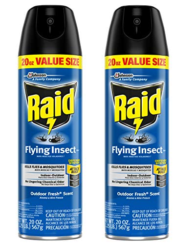 Raid Flying Insect Killer Lawn and Garden, 20 OZ (Pack - 2)