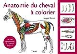 Anatomie du cheval à colorier - Une aide à l'apprentissage de l'anatomie du cheval