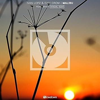 Malibu (feat. Brish) [Vocal Edit]
