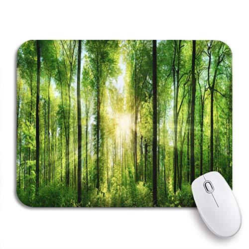 MIGAGA Alfombrilla de ratón,Panorama del pintoresco Bosque de Hojas caducas Verdes...