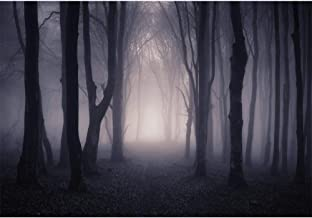 Allenjoy 8x6ft Misty Dark Forest Woods Halloween Backdrop for Photography Gloomy Grove Mystery Vampire Background for Portrait Magic Witch Wizard Sorcerer Ghost Themed Party Banner Decors Photo Props